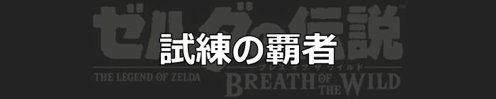 試練の覇者_ブレスオブザワイルド
