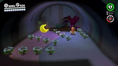 咲かせて洞くつの花-スーパーマリオオデッセイ