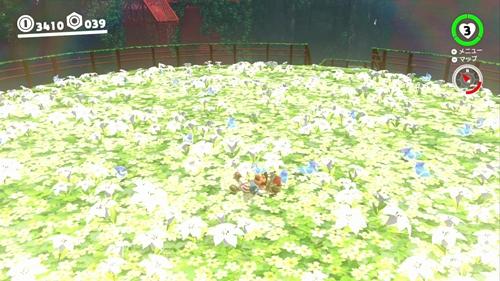 空中庭園の花ドロボウ-マリオオデッセイ