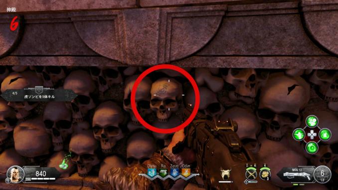 印の頭蓋骨